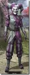 Royal Court Jester - Khajiit Female Front