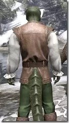 Soiree in Camlorn Evening Outfit - Argonian Male Close Rear