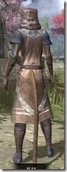 Telvanni Wizard-Lord Robe - Khajiit Female Rear