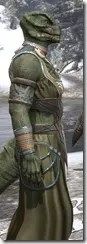Treethane Ceremonial Dress - Argonian Male Close Side