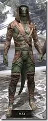Wood Elf Vanguard - Argonian Male Front