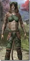 Wood Elf Vanguard - Khajiit Female Close Front