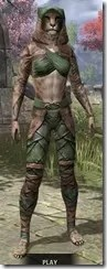 Wood Elf Vanguard - Khajiit Female Front