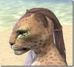 Bright-Throat Algae Face Tattoo Khajiit Female Side
