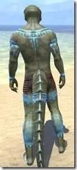 Bright-Throat Woad Body Tattoo Argonian Male Rear
