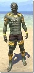 Bright-Throat Yolk Body Tattoo Argonian Male Front