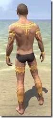 Bright-Throat Yolk Body Tattoo Male Rear
