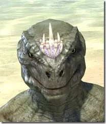 Dead-Water Tooth-and-Tusk Tiara Argonian Male Front