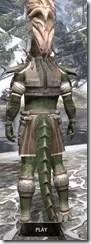 Mazzatun Iron - Argonian Male Rear