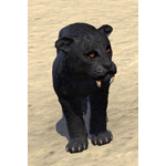 Nightfall Sabre Cat Cub