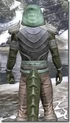 Pyandonean Homespun - Argonian Male Shirt Close Rear