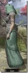 Pyandonean Homespun - Khajiit Female Robe Side