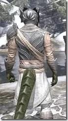 Pyandonean Iron - Argonian Male Close Rear
