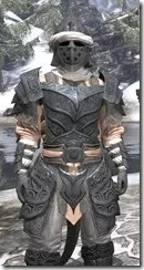 Abah's Watch - Argonian Male Close Front