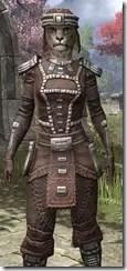 Argonian Iron - Khajiit Female Close Front