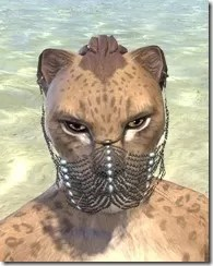 Belly Dancer Veil - Khajiit Female Front
