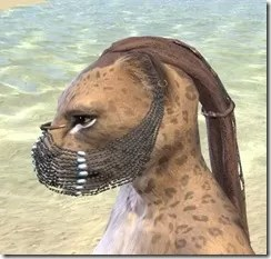 Belly Dancer Veil - Khajiit Female Side