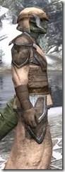 Dark Elf Homespun - Argonian Male Robe Close Side