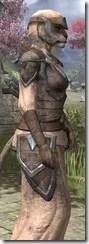 Dark Elf Homespun - Khajiit Female Robe Close Side