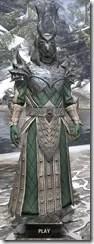 Ebonheart Pact Homespun - Argonian Male Robe Front