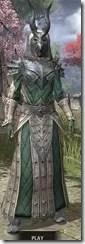 Ebonheart Pact Homespun - Khajiit Female Robe Front