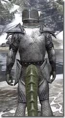 High Elf Steel - Argonian Male Close Rear