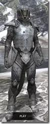 High Elf Steel - Argonian Male Front