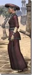 Honor Guard Ancestor Silk - Female Robe Side