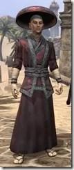 Honor Guard Ancestor Silk - Male Robe Front