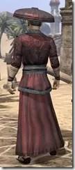 Honor Guard Ancestor Silk - Male Robe Rear