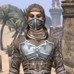 Honor Guard Rawhide