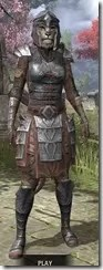 Imperial Steel - Khajiit Female Front