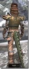 Khajiit Dwarven - Argonian Male Rear