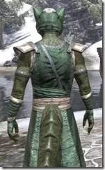 Khajiit Homespun - Argonian Male Robe Close Rear