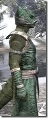 Khajiit Homespun - Argonian Male Robe Close Side