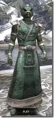Khajiit Homespun - Argonian Male Robe Front