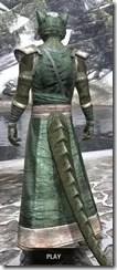 Khajiit Homespun - Argonian Male Robe Rear