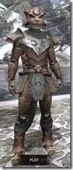 Khajiit Steel - Argonian Male Front