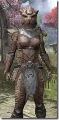 Khajiit Steel - Khajiit Female Close Front