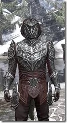 Meridian Light - Argonian Male Shirt Close Front