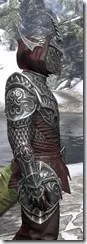 Meridian Light - Argonian Male Shirt Close Side