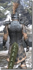 Order of the Hour Iron - Argonian Male Close Rear