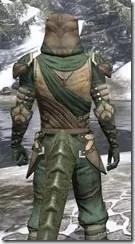Outlaw Homespun - Argonian Male Robe Close Rear