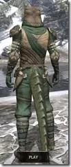 Outlaw Homespun - Argonian Male Robe Rear