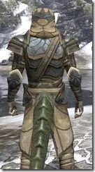 Outlaw Iron - Argonian Male Close Rear