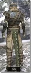 Outlaw Iron - Argonian Male Rear