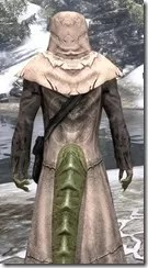 Prophet - Argonian Male Close Rear
