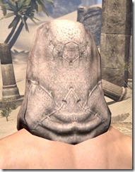 Prophet's Hood - Male Rear
