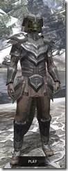 Redguard Steel - Argonian Male Front