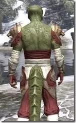 Sai Sahan - Argonian Male Close Rear